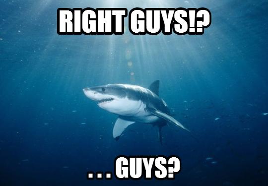 shark_lost_friends