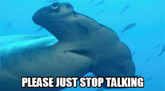 shark_please_stop_talking