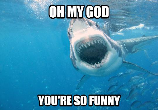 shark_weird_laugh