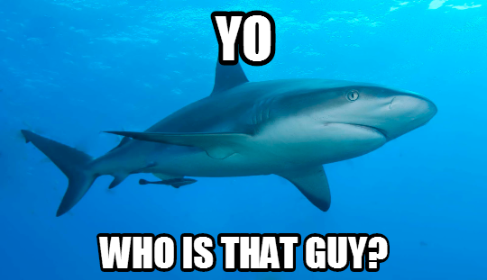 shark_whos_that_guy